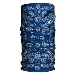 HA110-0280 India Paisley Blue